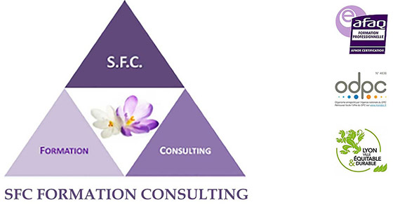 SFC Formation Consulting