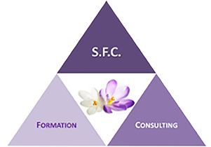 Logo SFC Audits pharmacie
